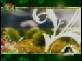 SPECIAL! Hafta-e-Wahdat - Week of Muslim Unity - 2009 Documentary - Part 1- Urdu
