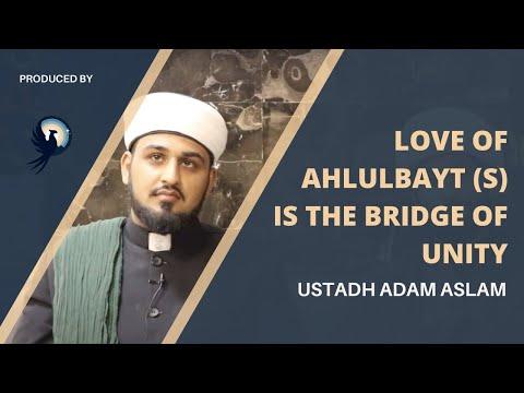 Arba'een Reflections: Love of Ahlulbayt (a) is the bridge of unity | Sunni Imam | Arba'een Walk 2021 - English