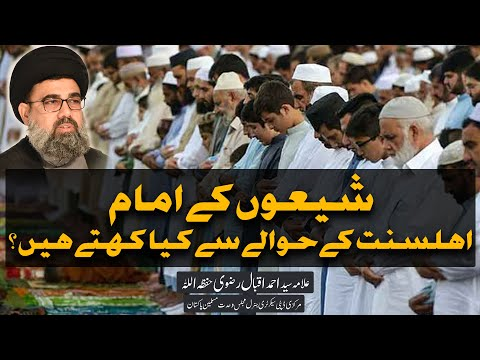 Shion k Imam Ahle Sunnat k hawaly se kia kahty hain?   Allama Syed Ahmed Iqbal Rizvi   Urdu