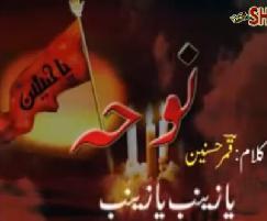 Ali Safdar Noha 2010 - Ya Zainab Ya Zainab - Urdu