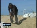 PressTV - Israel shoots Gaza boys collecting gravel - English