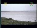 [21] شہيد کوفہ Serial : Shaheed-e-Kufa - Imam Ali Murtaza (a.s) - Urdu sub English
