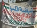 No change in Cairos policies toward Palestine - 02Apr2011 - English
