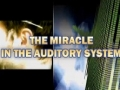The miracle in the auditory system - English