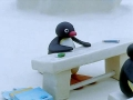 Kids Cartoon - PINGU - Pingu Refuses To Help - All Languages Other