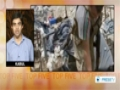 [5 Sept 2013] Local Afghan officials say US-led air-strike has killed at least 12 people - English