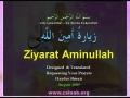 Ziyarat Aminallah *My favorite recitation* Arabic sub English