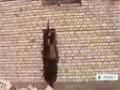[17 Feb 2014] Violence increases in Iraq - English