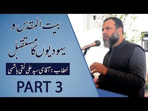 Discussion About Palestine & Israel Future    Syed Ali Naqi Hashmi    Part 3 - Urdu