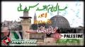 [AL-QUDS 2013] عالمی یوم القدس ریلی - Interviews - Lahore - 2 August 2013 - Urdu